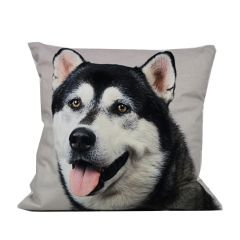 Velvet Cushion Husky