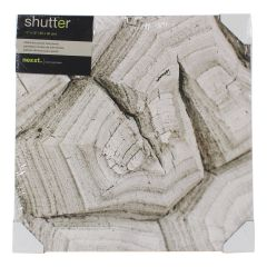 Shutter Petrified Wood Canvas Print 12 x 12in