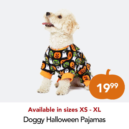 Halloween dog outfit